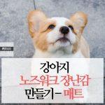 강아지 노즈워크 만들기 1탄 노즈워크 매트