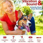 DogRook Dog Training Collar