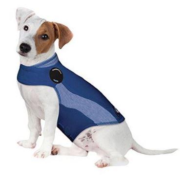 강아지 불안진정 자켓