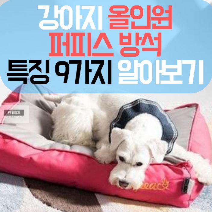 강아지 방석 퍼피스