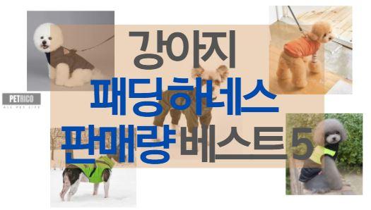 강아지 패딩 하네스 판매량 베스트 5